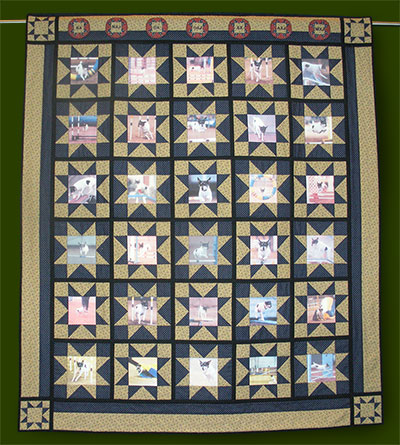 agility champ quilt